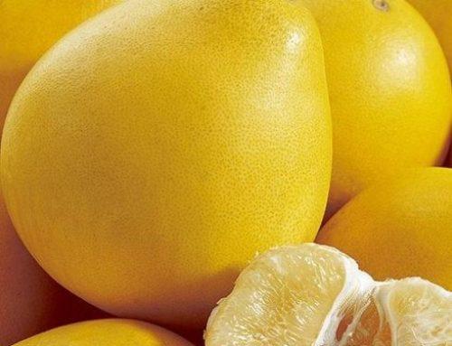 一个柚子九大食疗功效