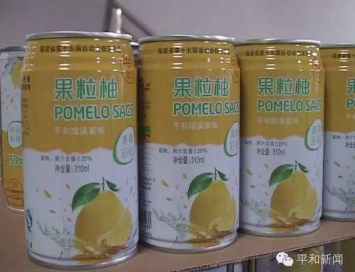 我省蜜柚饮料罐头首次出口日本